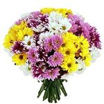 Bouquets of chrysanthemums - flowers and bouquets on salonroz.com