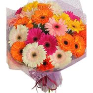 Bouquet of 21 gerbera flowers - flowers and bouquets on salonroz.com