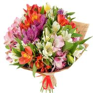Bouquet of flowers from 23 multi-colored alstromeries - flowers and bouquets on salonroz.com