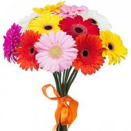 Bouquet of 15 gerberas flowers - flowers and bouquets on salonroz.com