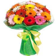 Bouquet of gerberas for sisters - flowers and bouquets on salonroz.com