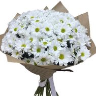 Bouquet of 19 chamomiles - flowers and bouquets on salonroz.com