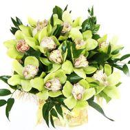 Букет зеленых орхидей - цветы и букеты на salonroz.com
