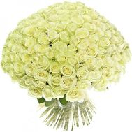 A huge bunch of 201 white roses - flowers and bouquets on salonroz.com