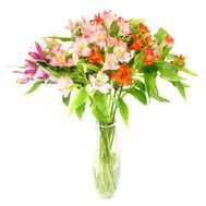Pleasant bouquet of alstroemerias - flowers and bouquets on salonroz.com