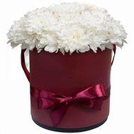 Коробка с белыми хризантемами - цветы и букеты на salonroz.com