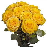 11 yellow roses - flowers and bouquets on salonroz.com