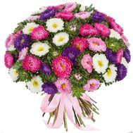 101 астра в великолепном букете - цветы и букеты на salonroz.com