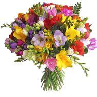 55 экзотических фрезий - цветы и букеты на salonroz.com