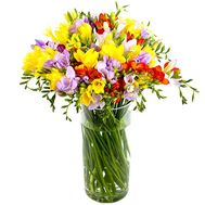 A fragrant bouquet of freesias - flowers and bouquets on salonroz.com