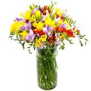 Ароматный букет фрезий - цветы и букеты на salonroz.com