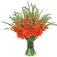 Large bouquet of gladiolus - flowers and bouquets on salonroz.com
