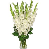 Bouquet of white gladioluses - flowers and bouquets on salonroz.com
