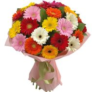 Bouquet of 25 Multicolored Gerberas - flowers and bouquets on salonroz.com
