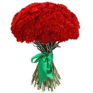 Bouquet of carnations - Houston - flowers and bouquets on salonroz.com