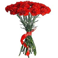 Bouquet of carnations - Victory - flowers and bouquets on salonroz.com