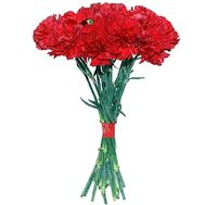 Bouquet of carnations - Riga - flowers and bouquets on salonroz.com