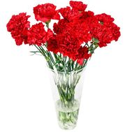 Bouquet of carnations - Jurmala - flowers and bouquets on salonroz.com