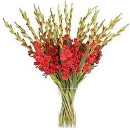 Bouquet of 35 gladioluses - flowers and bouquets on salonroz.com