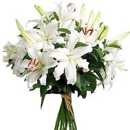 Bouquet of lilies - Malaga - flowers and bouquets on salonroz.com