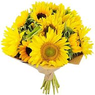 Bouquet of sunflowers - Bright mood - flowers and bouquets on salonroz.com