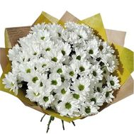 Bouquet of 15 chamomiles - flowers and bouquets on salonroz.com