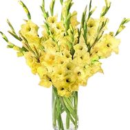 Yellow gladiolus bouquet - flowers and bouquets on salonroz.com