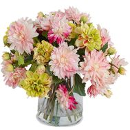 Dahlias for a gift - flowers and bouquets on salonroz.com