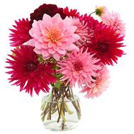 Dahlias in a bouquet - flowers and bouquets on salonroz.com