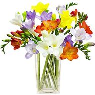 A small bouquet of freesias - flowers and bouquets on salonroz.com