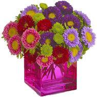 Миксовый букет астр - цветы и букеты на salonroz.com