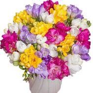 Fashion bouquet of freesias - flowers and bouquets on salonroz.com