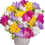 Модный букет фрезий - цветы и букеты на salonroz.com