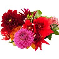 A small bouquet of dahlias - flowers and bouquets on salonroz.com