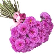 Delicate bouquet of pink dahlias - flowers and bouquets on salonroz.com