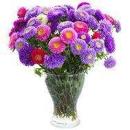 Осенний букет астр - цветы и букеты на salonroz.com