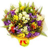 Популярный букет фрезий - цветы и букеты на salonroz.com