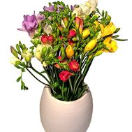 A modern bouquet of freesias - flowers and bouquets on salonroz.com
