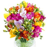 Magnificent freesias in bouquet - flowers and bouquets on salonroz.com