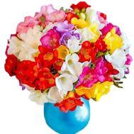 Яркий букет фрезий - цветы и букеты на salonroz.com