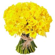 101 daffodils in a bouquet - flowers and bouquets on salonroz.com