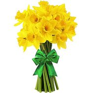 15 yellow daffodils - flowers and bouquets on salonroz.com