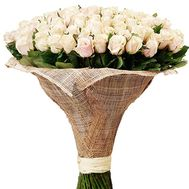151 cream-colored roses - flowers and bouquets on salonroz.com