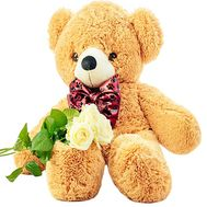 3 white roses and teddy bear - flowers and bouquets on salonroz.com