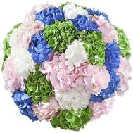 Large bouquet of hydrangeas - flowers and bouquets on salonroz.com