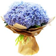 Bouquet of blue hydrangeas in paper - flowers and bouquets on salonroz.com