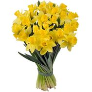 Bouquet of 35 daffodils - flowers and bouquets on salonroz.com