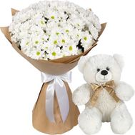 Bouquet of camomiles and Teddy Bear - flowers and bouquets on salonroz.com