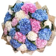 Mixed bouquet of hydrangeas - flowers and bouquets on salonroz.com