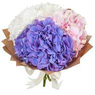Небольшой букет гортензий - цветы и букеты на salonroz.com